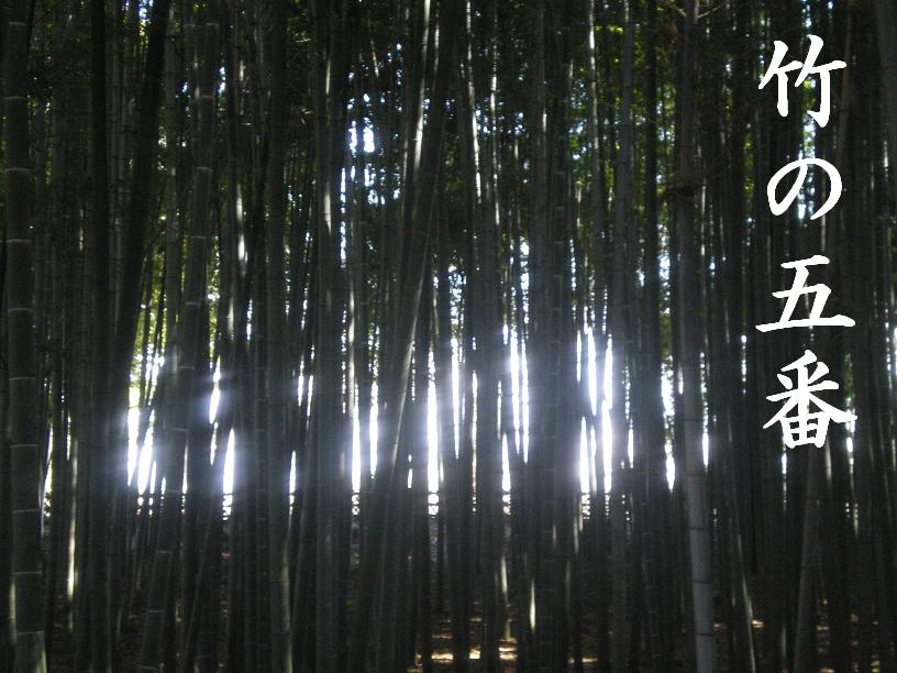 竹の五番2.JPG