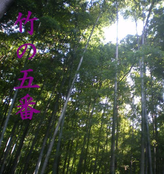 竹の五番3.JPG